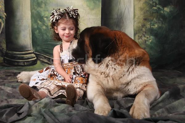 Adorable Child and Her Saint Bernard Puppy Dog Stock photo © tobkatrina