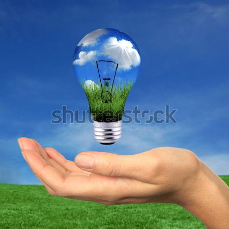 Groene energie wolken gras wereldbol globale hand Stockfoto © tobkatrina