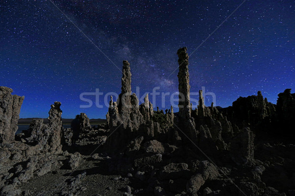 Art Landscape Image of the Tufas of Mono Lake Stock photo © tobkatrina
