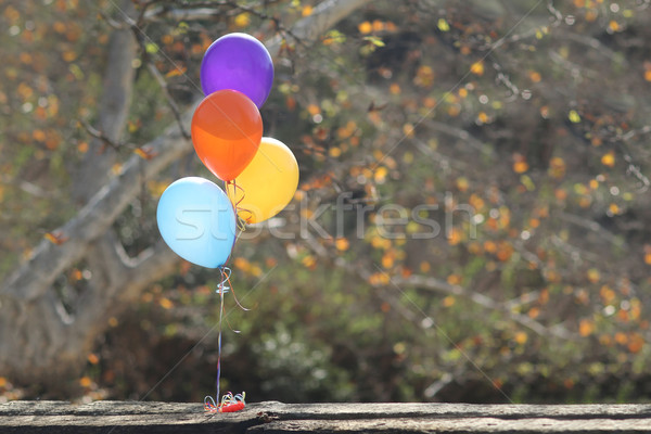 Balloons Outdoors at a Celebration with Copy Space Stock photo © tobkatrina