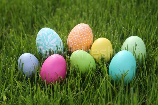 Kolorowy Easter Eggs martwa natura naturalne światło kwiaty charakter Zdjęcia stock © tobkatrina