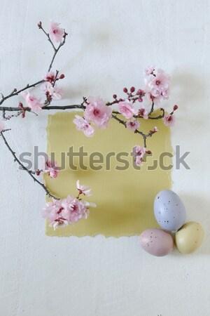 Pasqua vacanze ancora vita scena la luce naturale primavera Foto d'archivio © tobkatrina