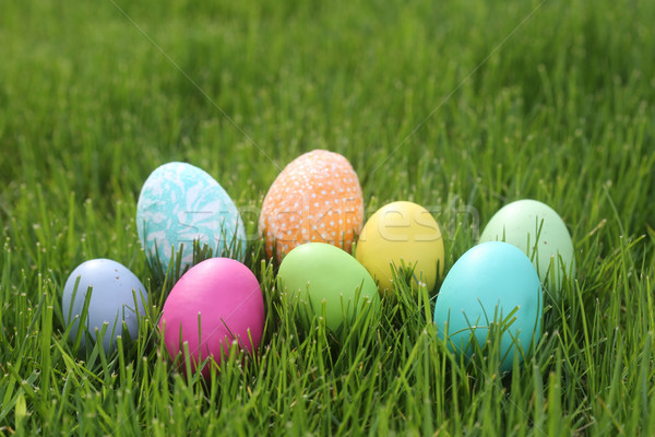 Colorful Easter Eggs Still Life With Natural Light Stock photo © tobkatrina