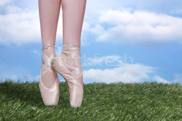 Perfect Ballet Dancer En Pointe With Copy Space Stock photo © tobkatrina