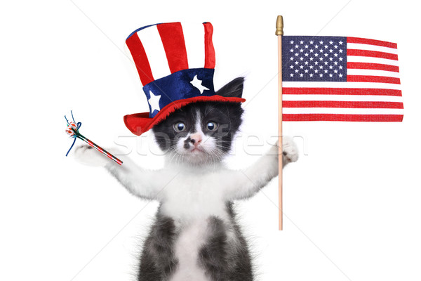 Funny Kitten Celebrating the American Holiday 4th of July Stock photo © tobkatrina