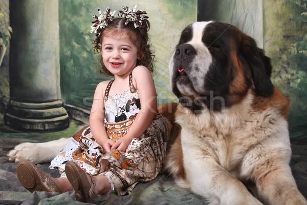 愛らしい 子 子犬 犬 愛 ストックフォト © tobkatrina