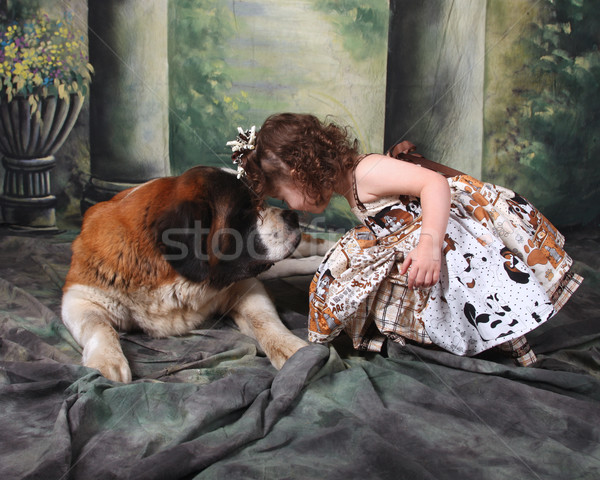 Adorable Child and Her Saint Bernard Puppy Dog Stock photo © tobkatrina