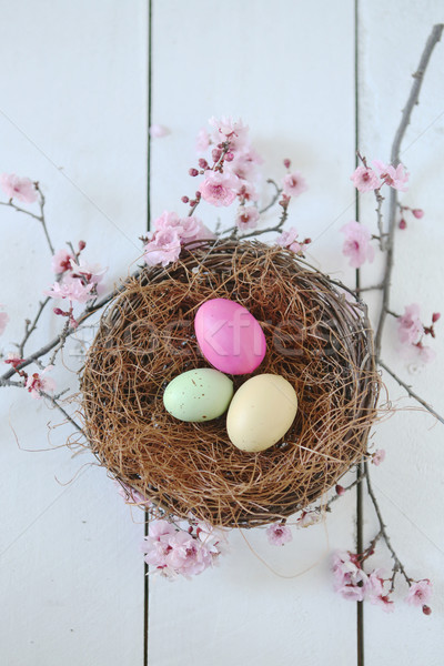 Wielkanoc wakacje martwa natura scena naturalne światło wiosną Zdjęcia stock © tobkatrina