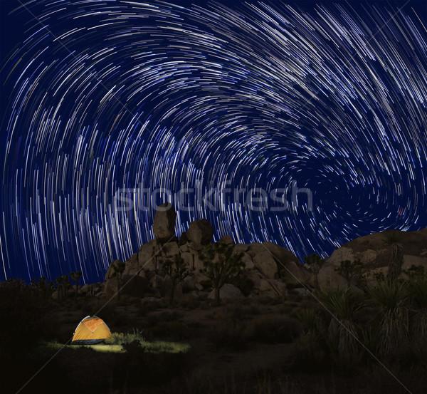 Longa exposição estrela árvore parque deserto estrelas Foto stock © tobkatrina