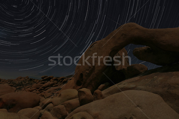 Night Star Trail Streaks over the Rocks of Joshua Tree Park Stock photo © tobkatrina