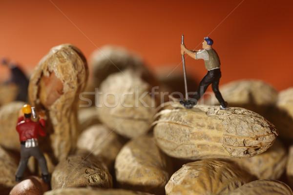 Plastic People Working on Peanuts Stock photo © tobkatrina