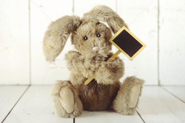 Teddybeer zoals bunny konijn houten Stockfoto © tobkatrina