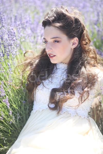 Photo stock: Joli · jeune · fille · extérieur · lavande · champ · de · fleurs · belle