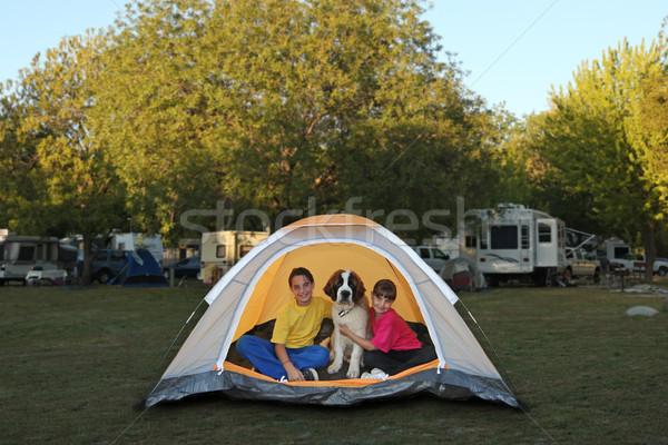 Meisjes hond tent camping broer buitenshuis Stockfoto © tobkatrina