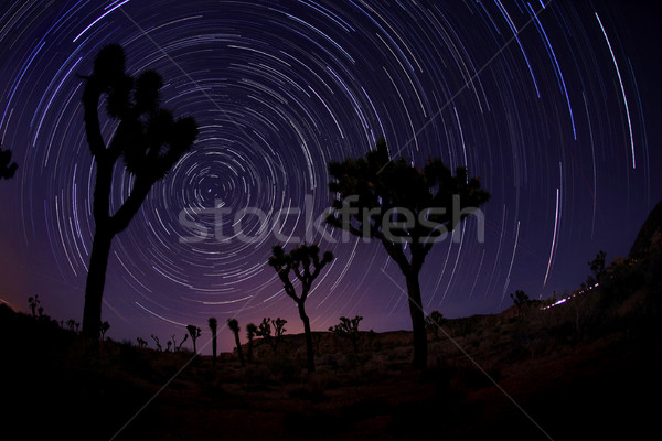 Light Painted Landscape of Stars Stock photo © tobkatrina