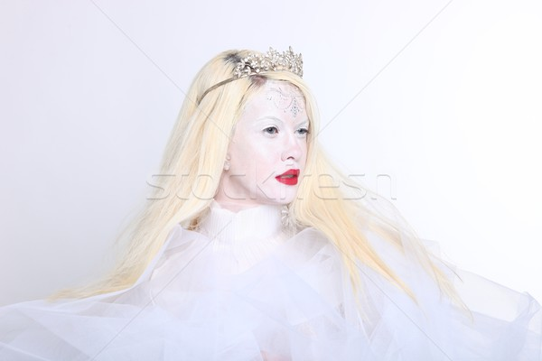 Concept of a Woman in Elaborate Make up and Hair Stock photo © tobkatrina