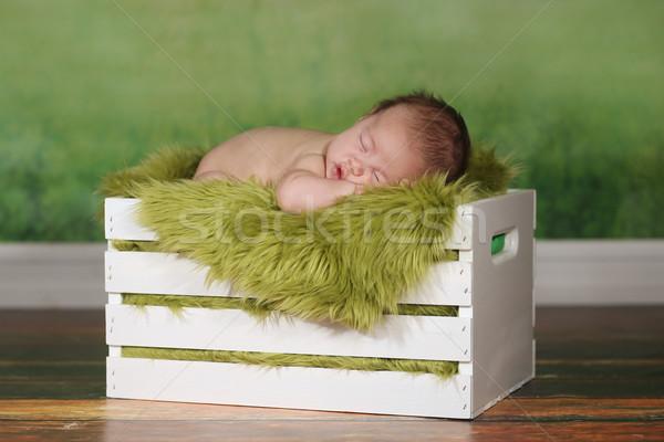 少年 寝 かわいい セット ストックフォト © tobkatrina