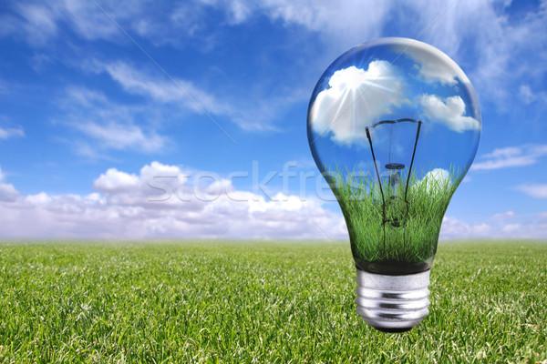 電球 自然 風景 電球 誰も 画像 ストックフォト © tobkatrina