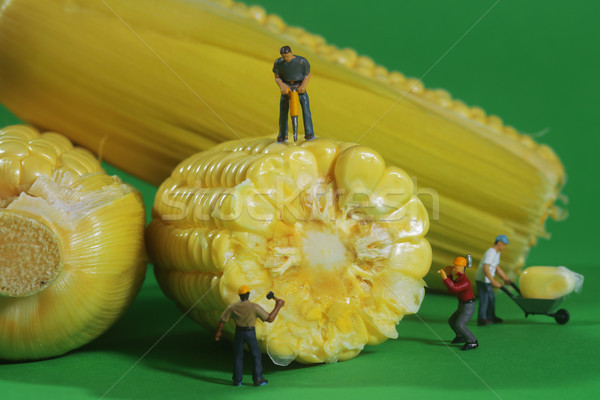 Miniature Construction Workers in Conceptual Food Imagery With C Stock photo © tobkatrina