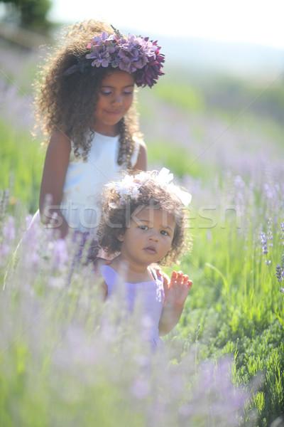 Foto stock: Irmãs · ao · ar · livre · lavanda · pequeno · menina