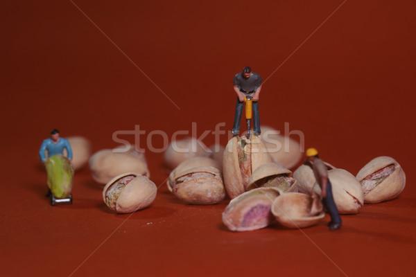 Construcción trabajadores alimentos pistacho miniatura Foto stock © tobkatrina