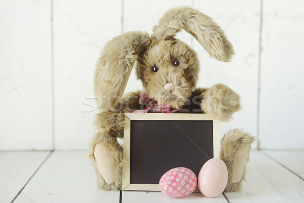 Lapin de Pâques vacances occasion image adorable nature Photo stock © tobkatrina