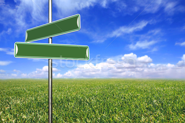 Blank Directional Signs in an Open Field Stock photo © tobkatrina