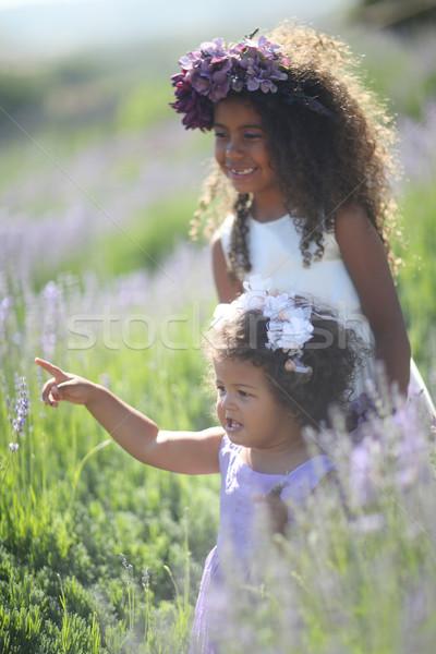 姉妹 屋外 ラベンダー 花畑 少女 ストックフォト © tobkatrina