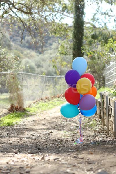 風船 屋外 お祝い コピースペース 歳の誕生日 幸せ ストックフォト © tobkatrina