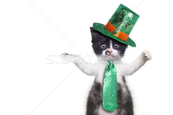 Funny Kitten Celebrating the American Holiday Saint Patricks Day Stock photo © tobkatrina