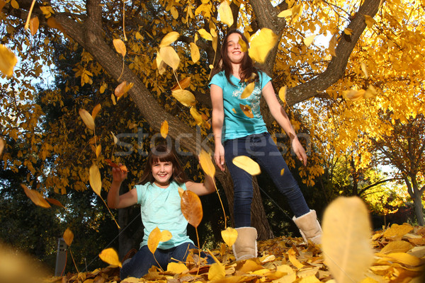 Children in an Autumn Forest in the Fall Stock photo © tobkatrina
