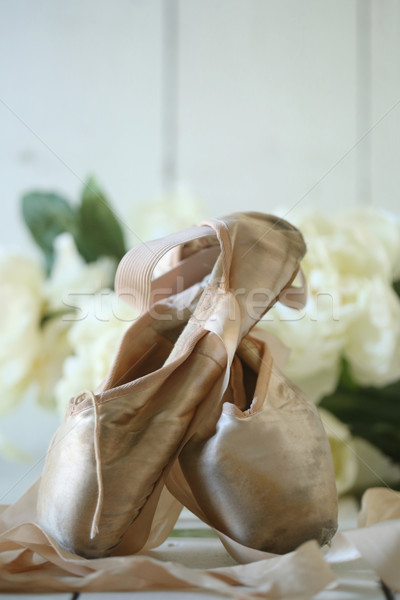 Posed Pointe Shoes in Natural Light  Stock photo © tobkatrina