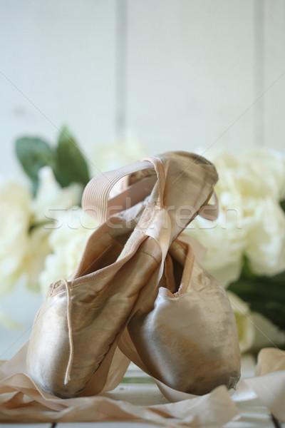 Schoenen natuurlijk licht romantische mode retro vintage Stockfoto © tobkatrina