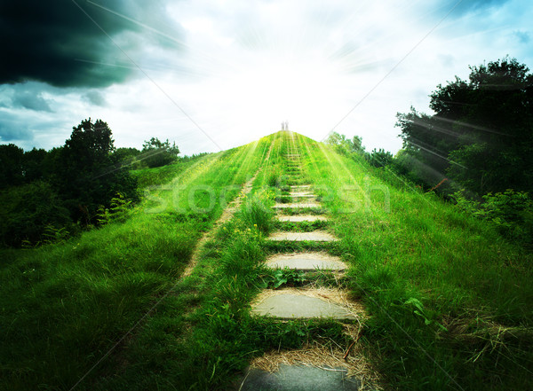 Stairs to heaven. Abstract natural backgrounds Stock photo © tolokonov