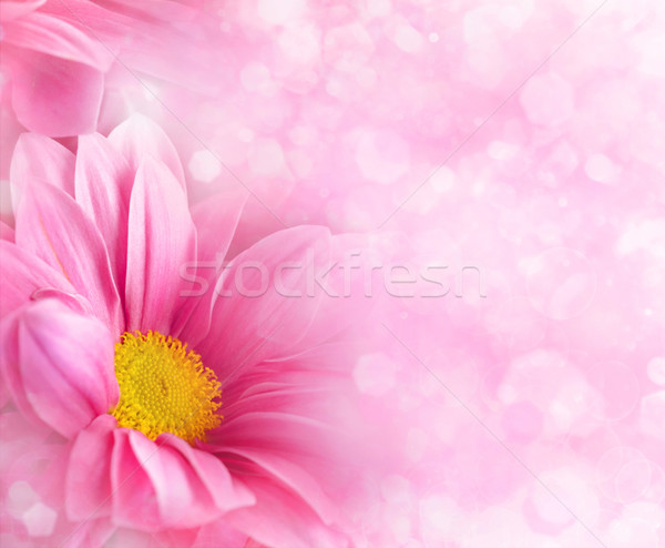 Abstract floral backgrounds for your design Stock photo © tolokonov