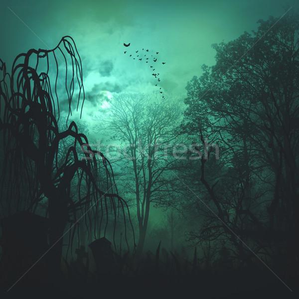 Foto stock: Resumen · horror · fondos · diseno · árbol · madera