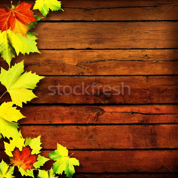 Levelek absztrakt ősz hátterek terv fa Stock fotó © tolokonov
