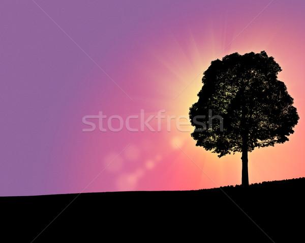 Fantastyczny rano wzgórza streszczenie środowisk tle Zdjęcia stock © tolokonov
