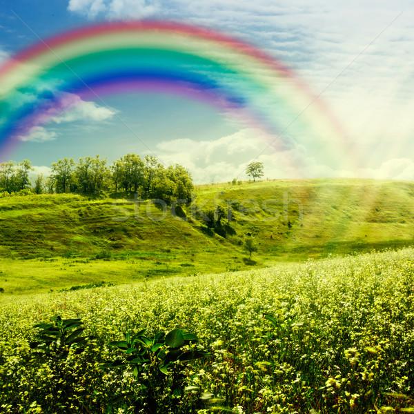 Arco iris pradera resumen naturales fondos cielo Foto stock © tolokonov