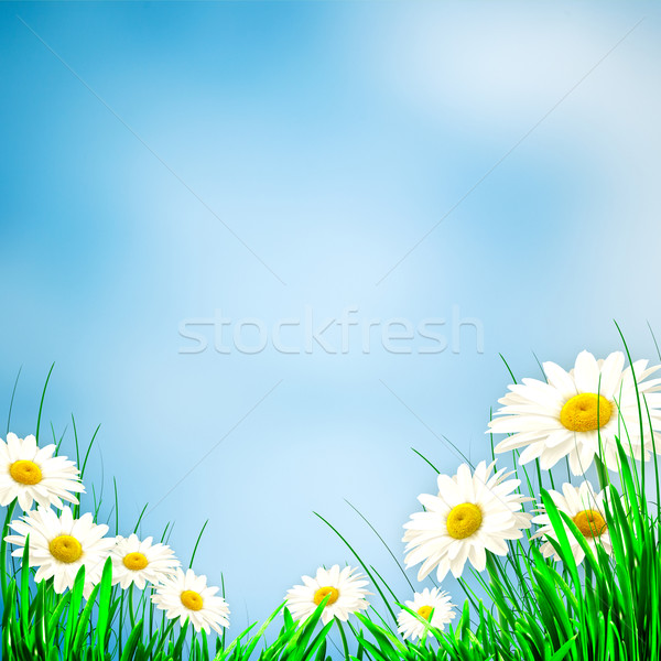 Abstract environmental backgrounds for your design Stock photo © tolokonov