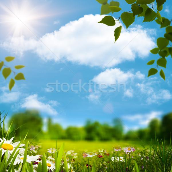 Beauty natural landscape under blue skies and bright sun Stock photo © tolokonov