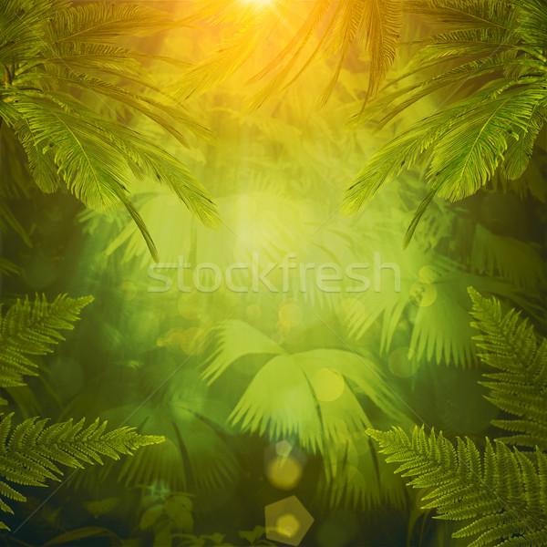 Trópusi délután absztrakt környezeti hátterek textúra Stock fotó © tolokonov
