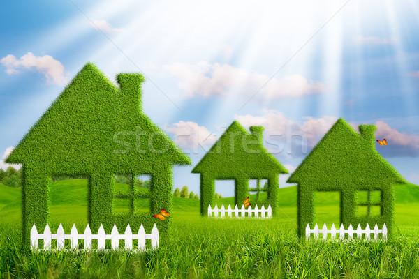Green House. Abstract environmental backgrounds Stock photo © tolokonov