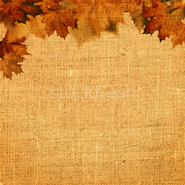 Autumnal abstract still life over hessian background for your de Stock photo © tolokonov
