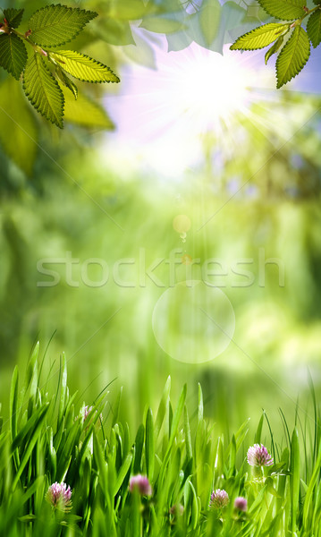 Green world, abstract environmental backgrounds for your design Stock photo © tolokonov