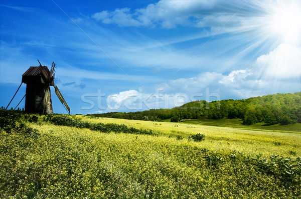 Green hills under the blue summer skies Stock photo © tolokonov