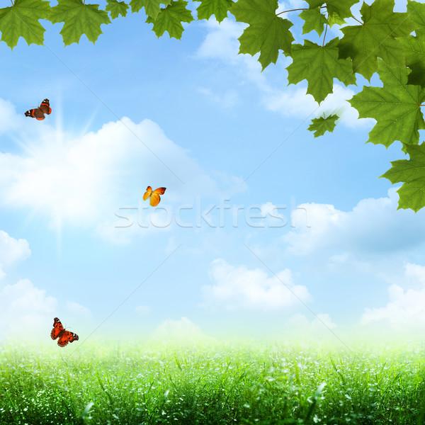 Azul resumen primavera verano fondos cielo Foto stock © tolokonov