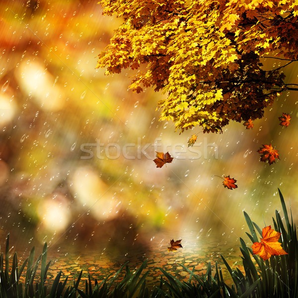 Autumn, abstract natural backgrounds for your design Stock photo © tolokonov