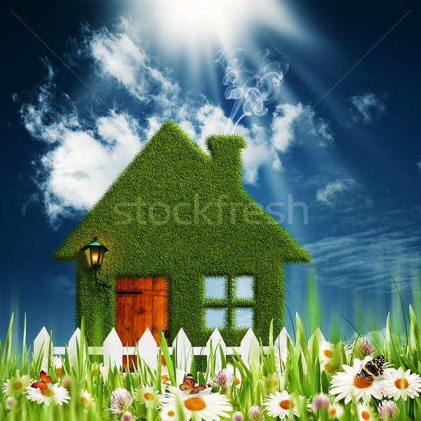 Green House. Environmental backgrounds for your design Stock photo © tolokonov
