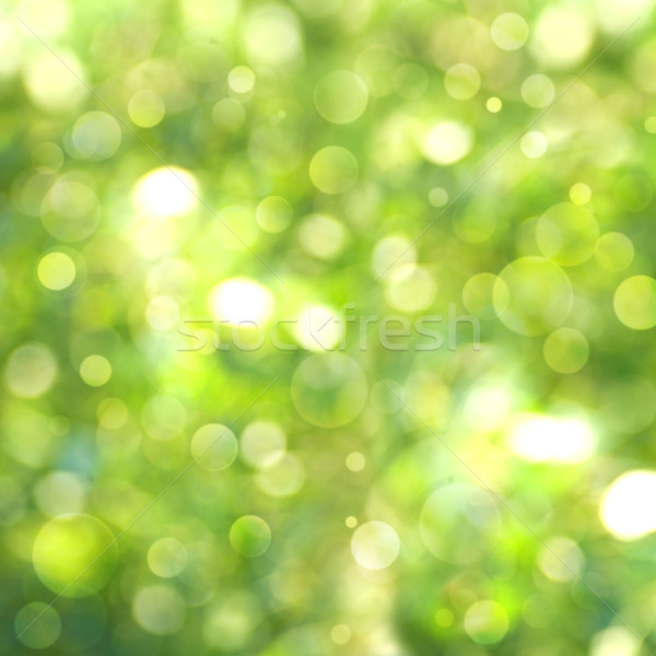Abstract natural summer and spring backgrounds Stock photo © tolokonov